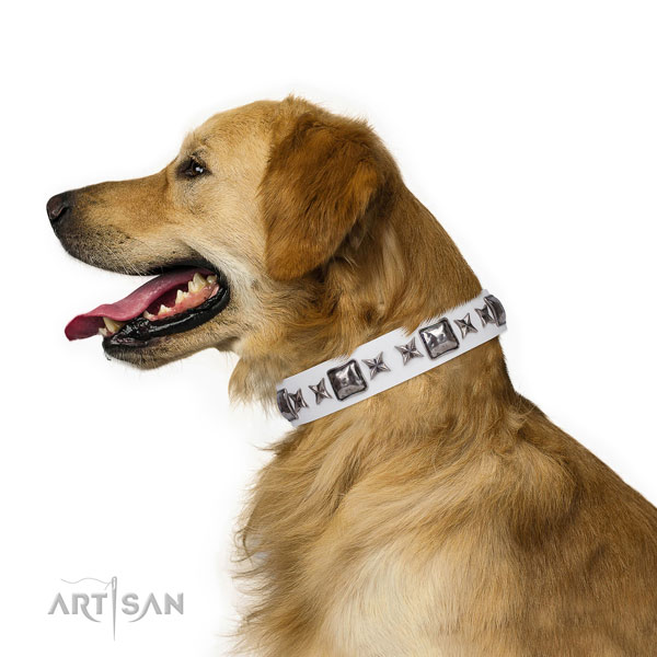 Golden Retriever easy adjustable full grain natural leather dog collar with adornments