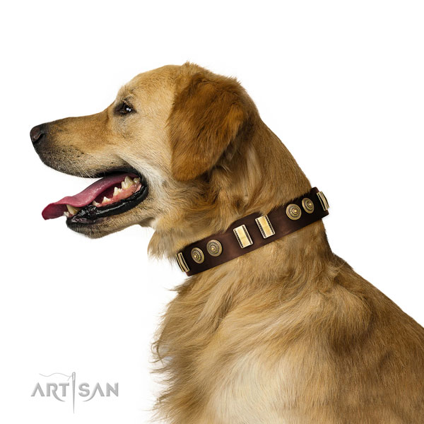 Golden Retriever stylish walking dog collar of top quality leather
