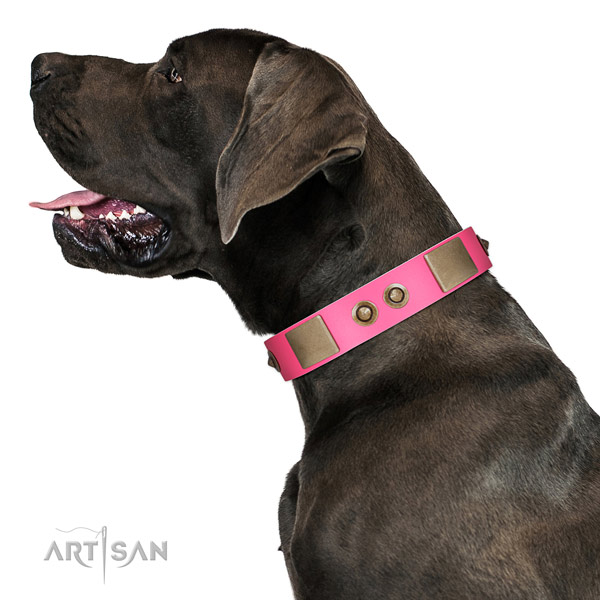 Genuine Pink Leather Great Dane Collar for Lady Dog