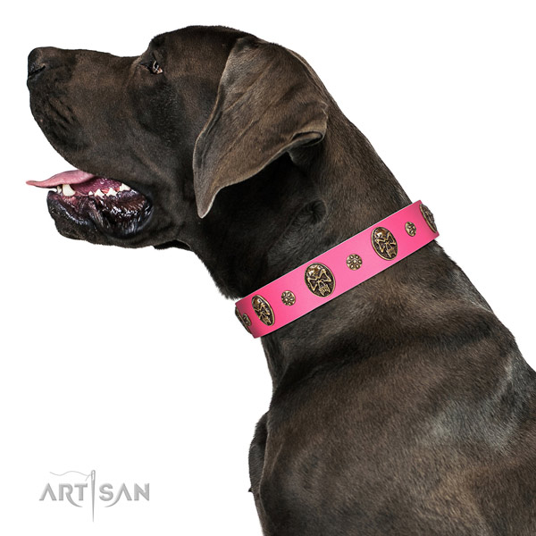exceptional Style Pink Leather Great Dane Collar