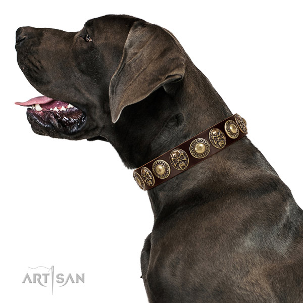 Non-toxic and safe leather Great Dane collar