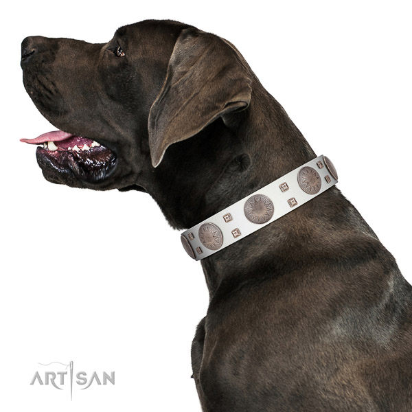 Walking top-notch quality walking leather Great Dane collar