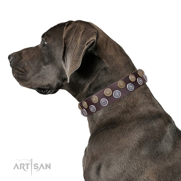 Great Dane awesome full grain leather dog collar with decorations