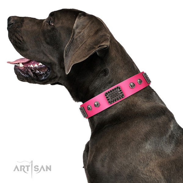Great Dane easy wearing dog collar of comfortable leather