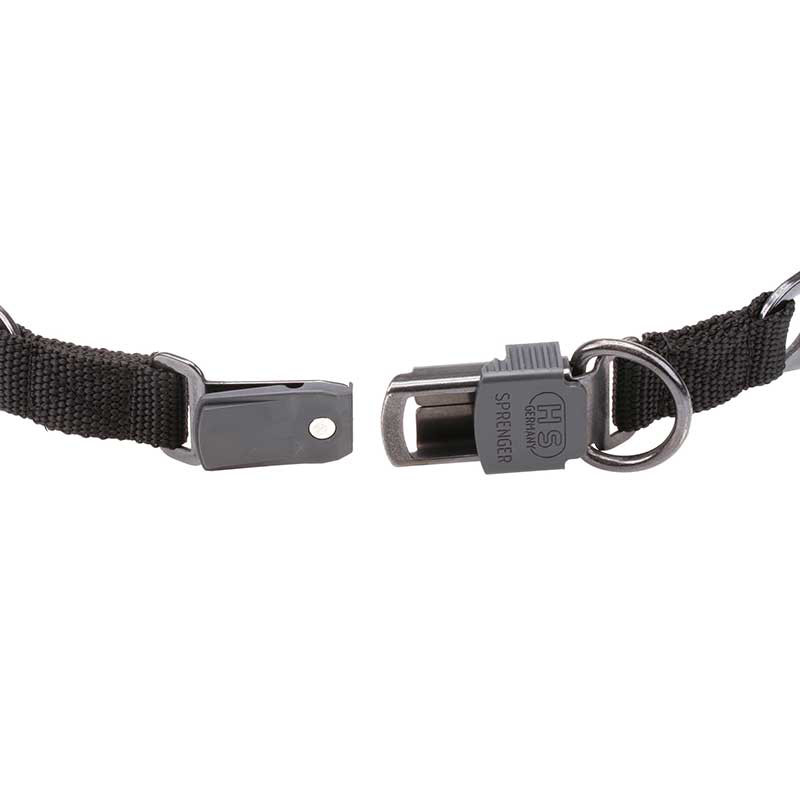Dog Prong Collar with Click Lock Buckle