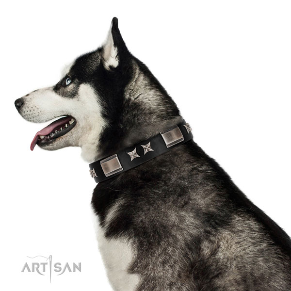 Soft to the touch leather Husky collar for daily use
