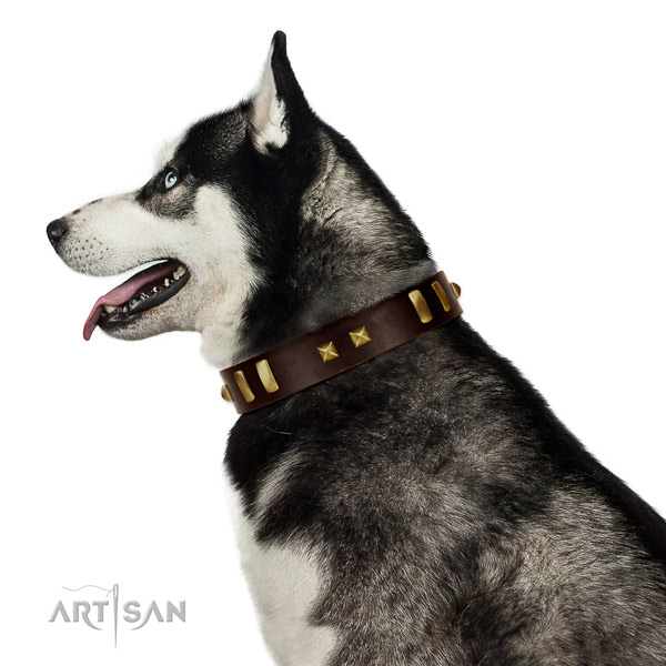 Soft Leather Husky Collar for Daily Use