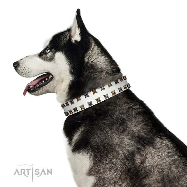 Decorated with Silvery and Gold-like Studs Leather Collar for Husky