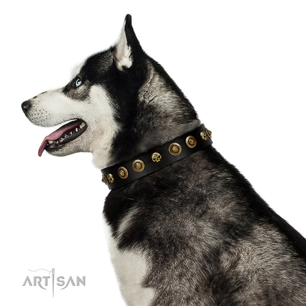 Premium quality Husky Artisan leather collar for comfortable wear