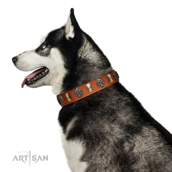 Gentle-to-touch Leather Husky Collar
