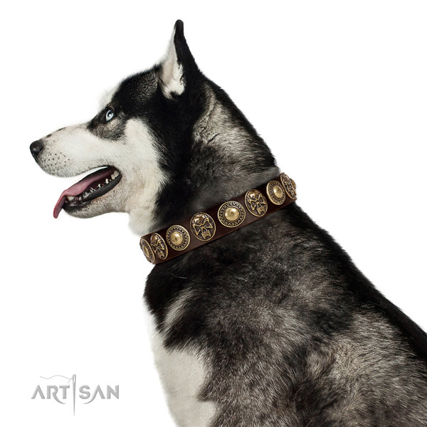 Comfortable leather Husky collar for daily use