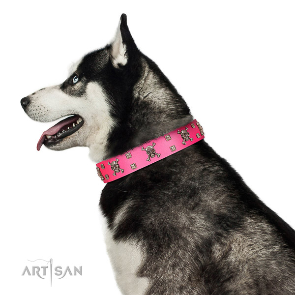 Extraordinary walking pink leather Husky collar with
