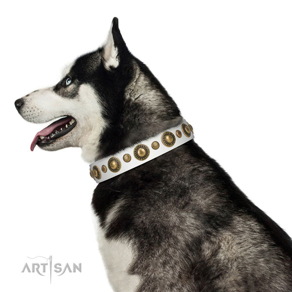 Handcrafted walking leather Husky collar