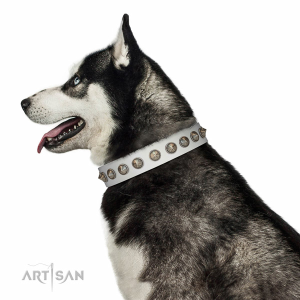 Beautiful white leather Husky collar for walks