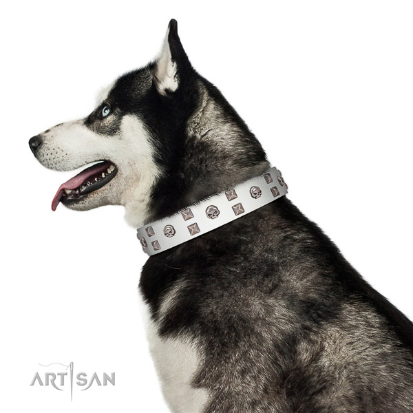 Exquisite style white leather dog collar for stylish Husky