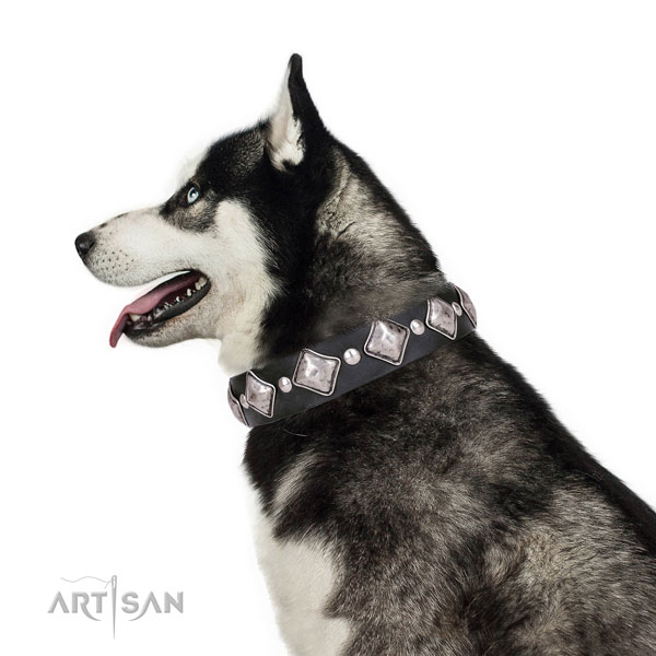Husky embellished full grain leather dog collar with embellishments