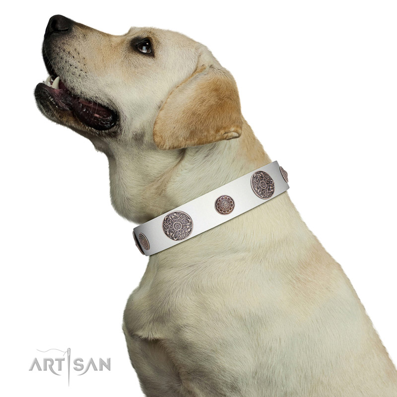 Walking top-notch quality walking leather Labrador