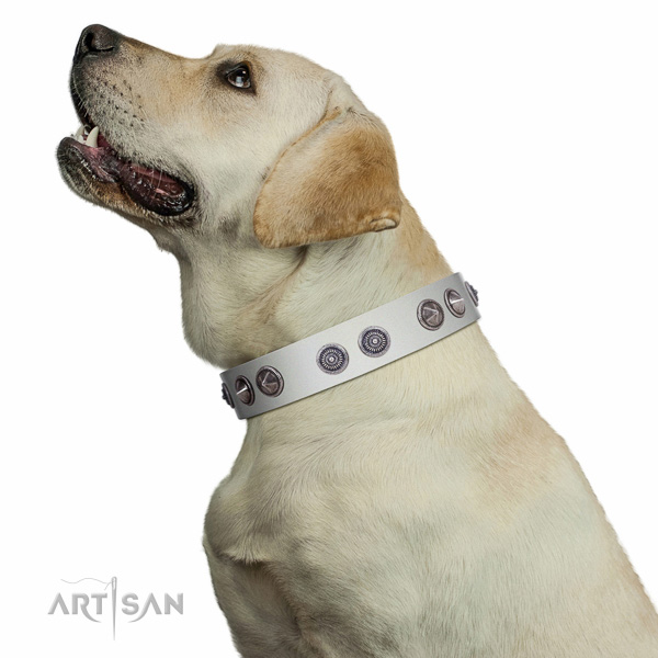 Handmade walking white leather Labrador collar with unique design