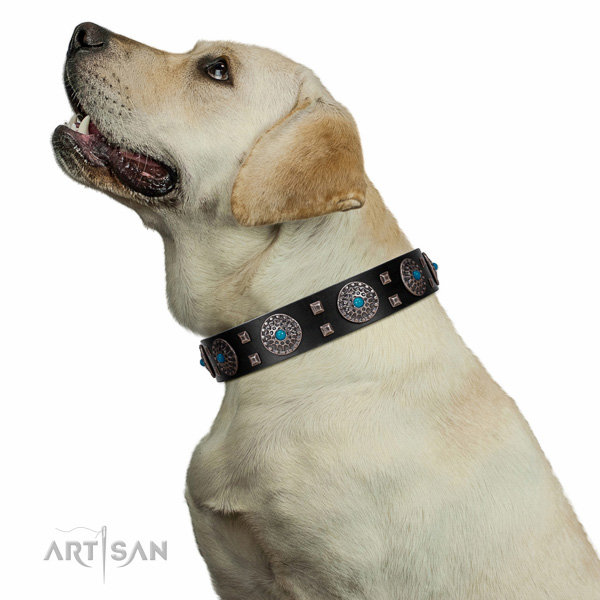 Exquisite style black leather Labrador collar