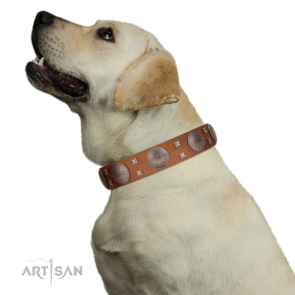 Labrador top quality natural genuine leather dog collar with embellishments
