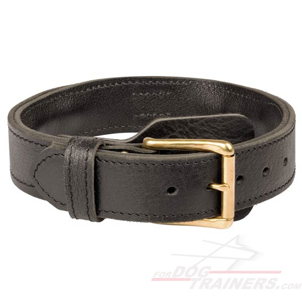 Leather Collar with brass hardware