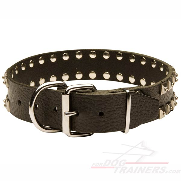 Strong Leather Dog Collar with Riveted Hardware
