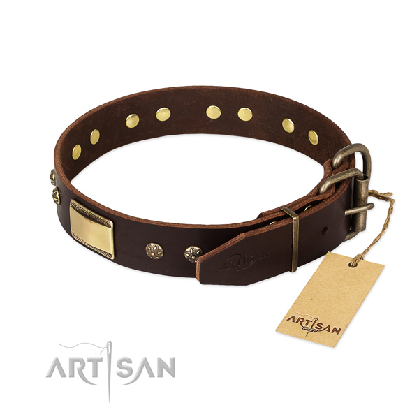 Best Quality Dog Collar