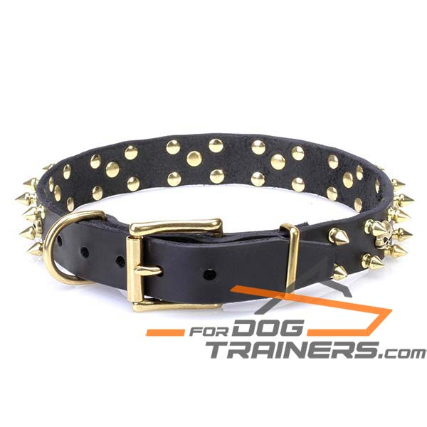 Stylish Dog Collar with Durable Fittings