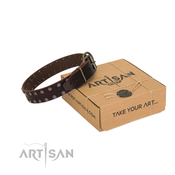 Brown Leather Dog Collar with Silver-like Plated Stars
