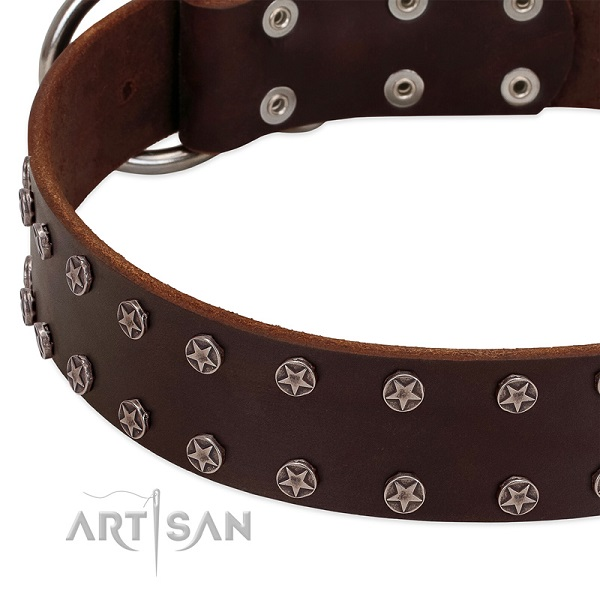 Perfectly Oiled Brown Leather Dog Collar with Vintage Stars