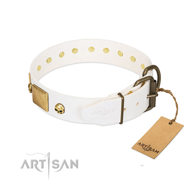 Top Notch Dog Collar with Rust-resistant Hardware