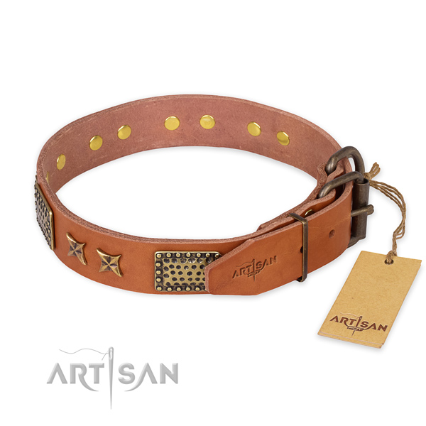 Designer Leather Dog Collar with Stars and Plates