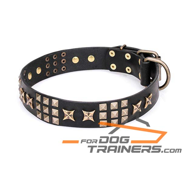 Stylish Dog Collar with Brass Plated Adornment