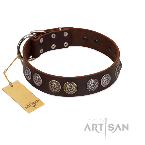 Brown Leather Dog Collar with Stunning Brooches