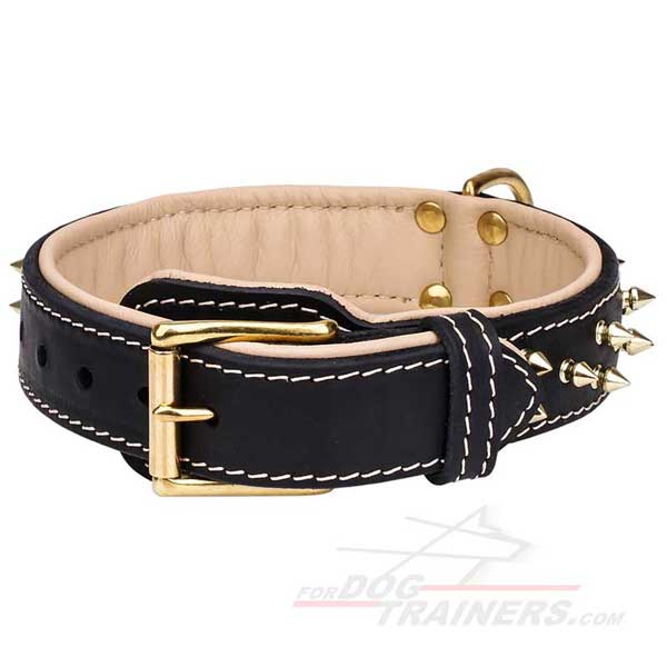 Unique Spiked Padded Leather Cane Corso Collar with Durable Buckle