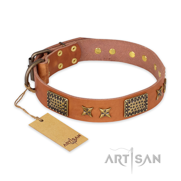 Leather Dog Collar with Durable Buckle and D-Ring