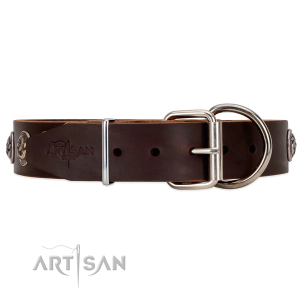 WAlking Dog Collar with Rust-proof Hardware