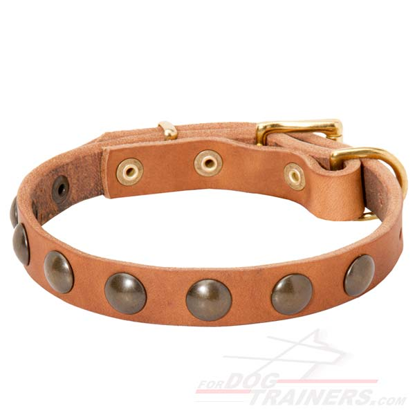 Fashionable Studded Leather Dog Collar