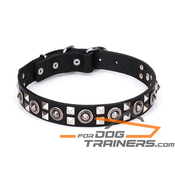 Decorated Leather Dog Collar with Strong Fittings