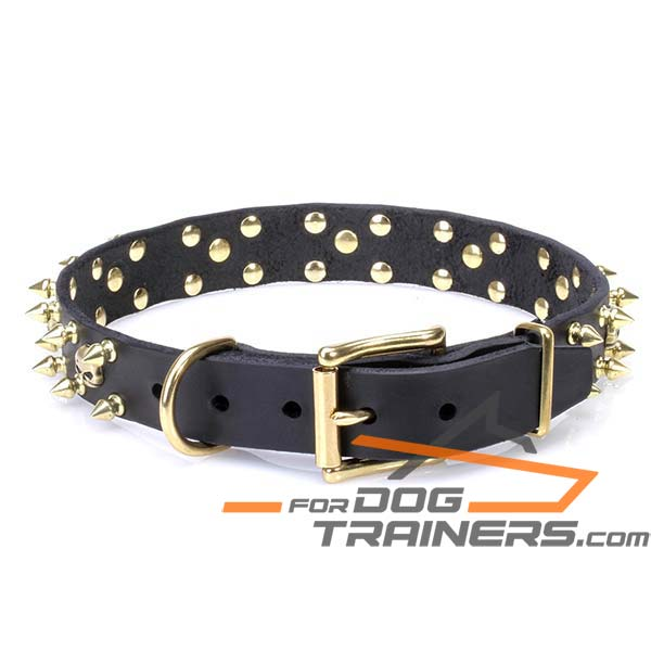 Stylish Dog Collar with D-ring for Leash Attachment