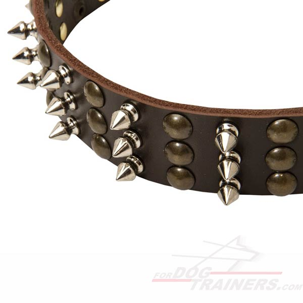 Decorated Leather Dog Collar