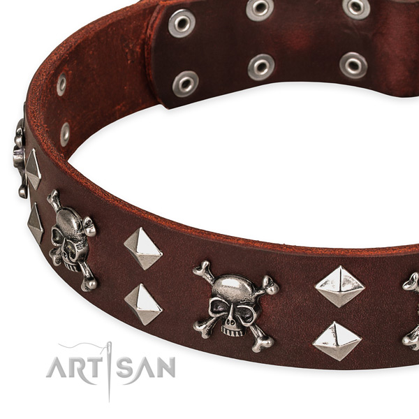 Strong brown leather dog collar with buckle and D-ring