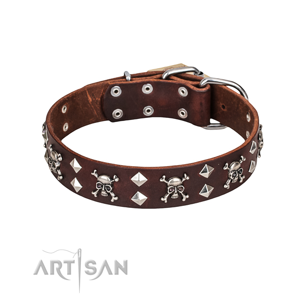 Adorned brown leather dog collar