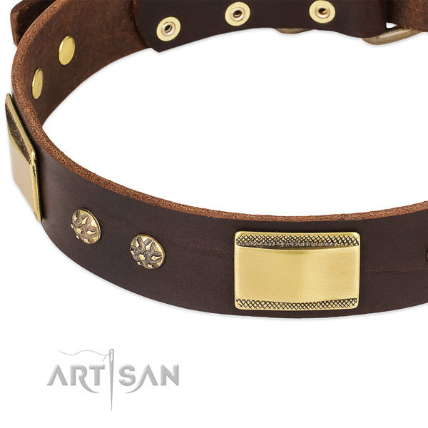 Best Quality Dog Collar with Plates