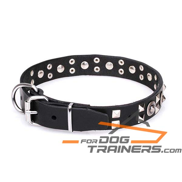 Stylish Dog Collar with Chrome Plated Steel Hardware
