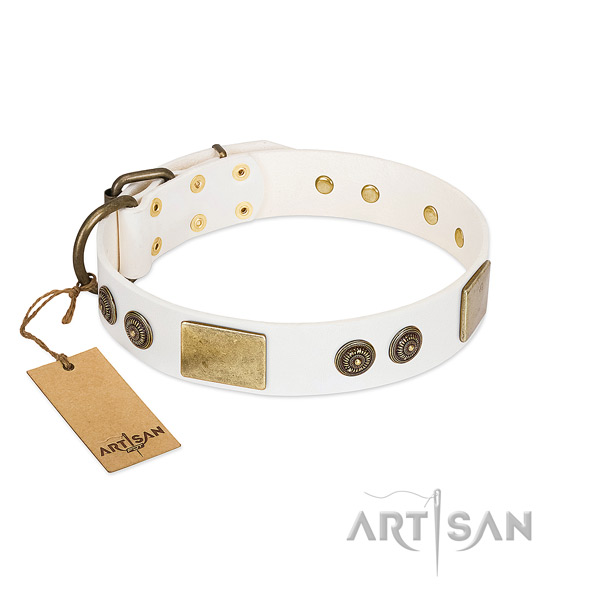 Posh White Leather Dog Collar Adorned with Gold-like Plates
