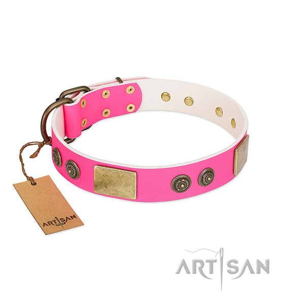 Luxury Style Pink Leather Dog Collar Adorned with Gold-like Plates