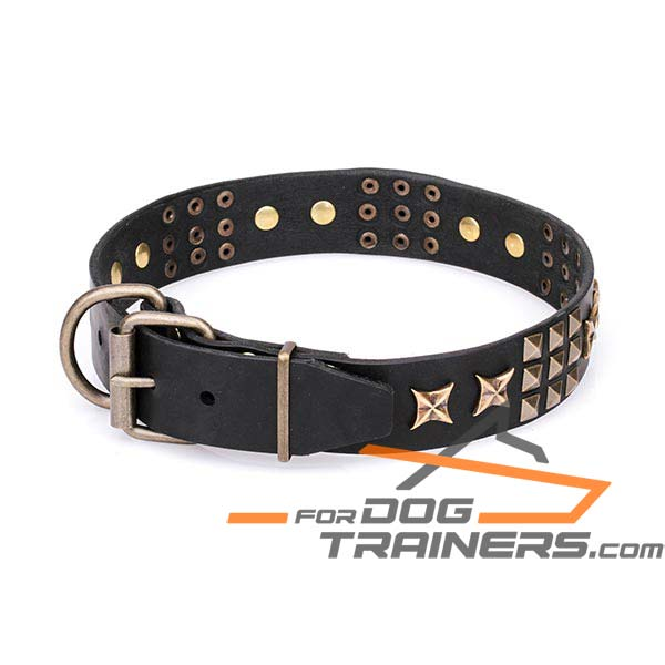Stylish Adornment on Dog Collar