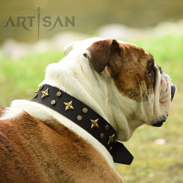 Exclusive brown leather dog collar with decorationsDash Looks All the Rage in Exclusive FDT Artisan Brown Leather Collar