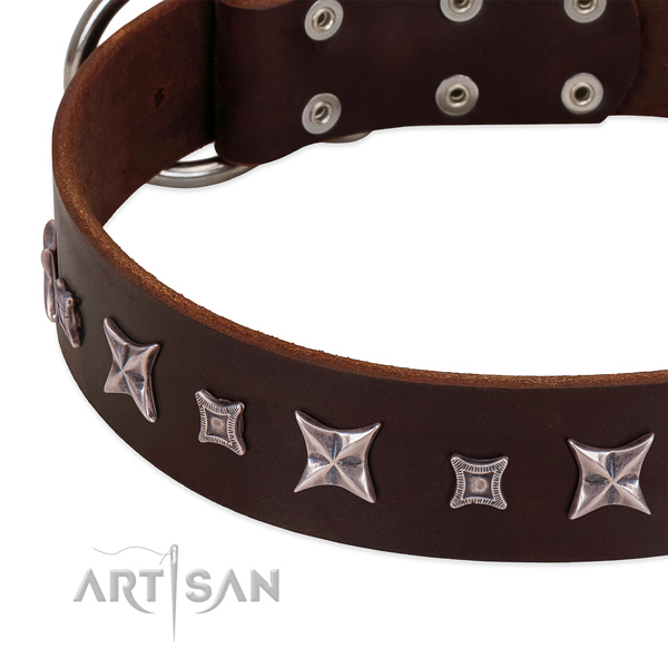 Fabulous design by FDT Artisan - leather dog collar for daily walks